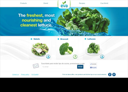 Eva Hydroponic Lettuces and Salads