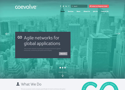 Coevolve Agile Networks for Global Applications